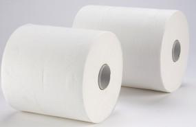 Handtuchpapierrolle 24 cm 2-lagig